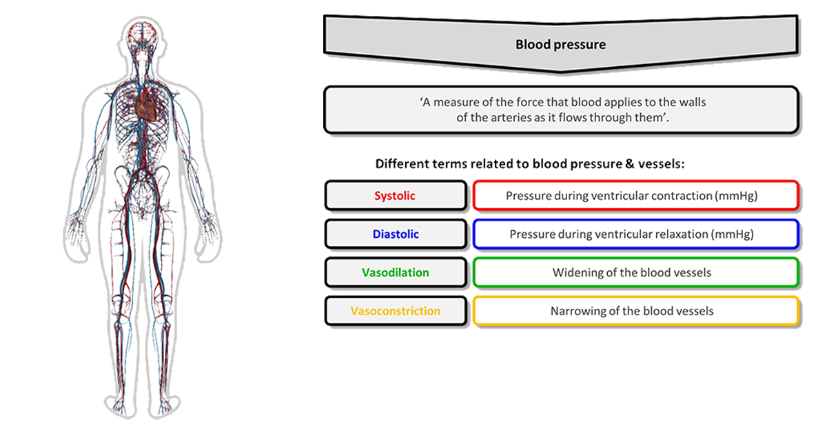 Different blood pressure terms