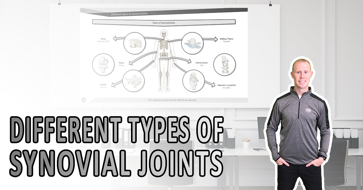 Different types of synovial joints